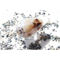 Камень серый агат 57 мм (AK0248)